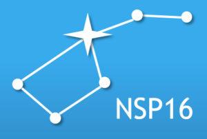 nsp16_logga